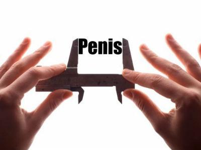 cum să determinați dimensiunea penisului